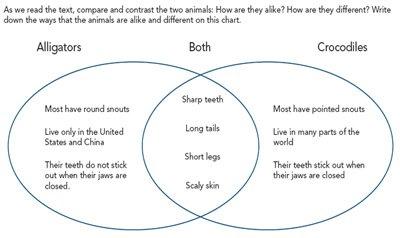 Compare, Contrast, Comprehend  Using Compare