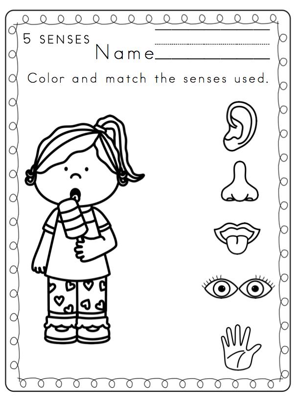 Cute Worksheets For Kids Kindergarten The Senses Five Senses