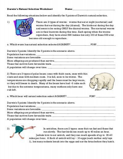 Darwin's Natural Selection Worksheet Natural Selection Darwins