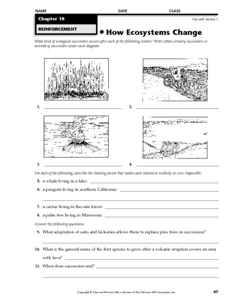 Ecological Succession Worksheet Ecological Succession Worksheet