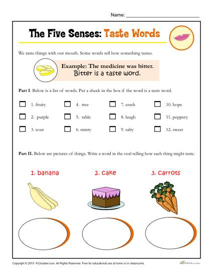 Five Senses Activity For Kindergarten And 1st Grade