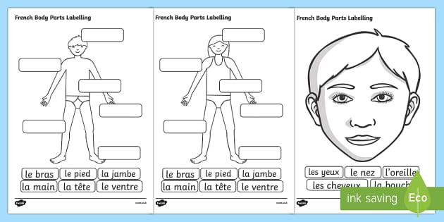 French Body Parts Labelling Worksheet