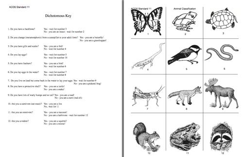Here's A Dichotomous Key Activity On Animals