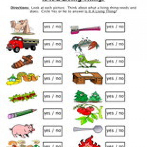 Living And Nonliving Worksheet Worksheets For All