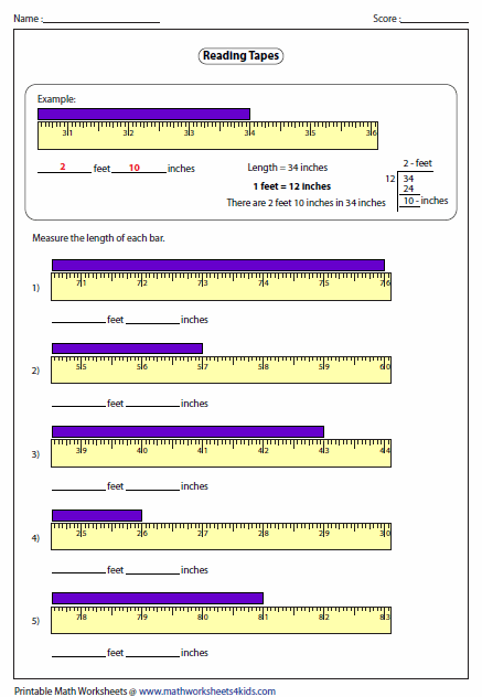 Measuring Length Worksheets