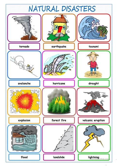 Natural Disasters Picture Dictionary Worksheet