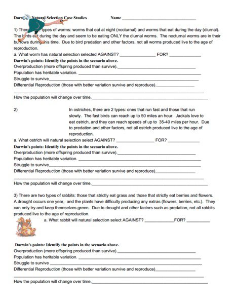 Natural Selection Worksheet Answer Key Natural Selection Worksheet