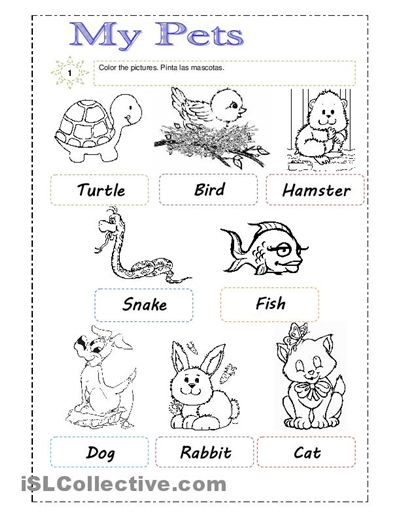 Pets Worksheets For First Grade