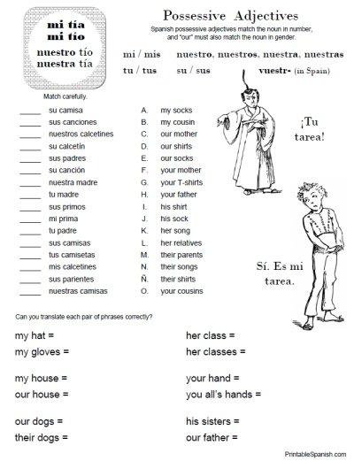 Possessive Adjectives Worksheet 1