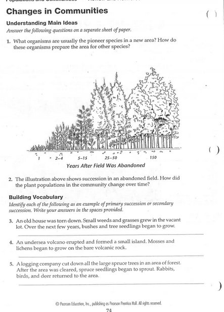 Primary Succession Worksheet Worksheets For All
