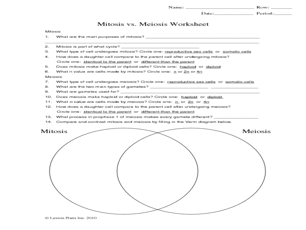 Printables  Comparing Mitosis And Meiosis Worksheet