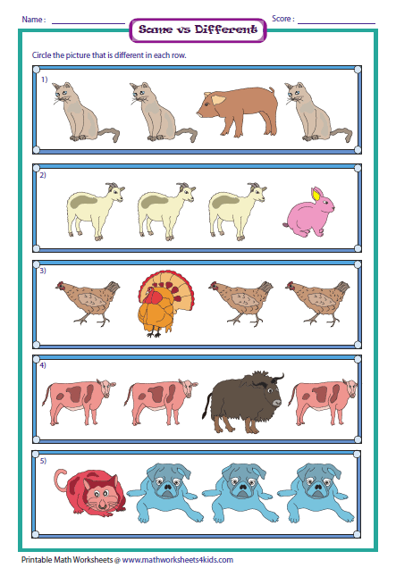 Same And Different Worksheets Similarities And Differences
