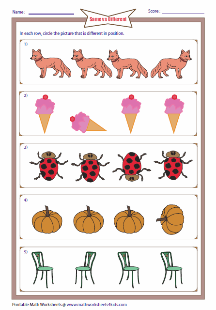 Similarities And Differences Worksheets For Kindergarten Same And