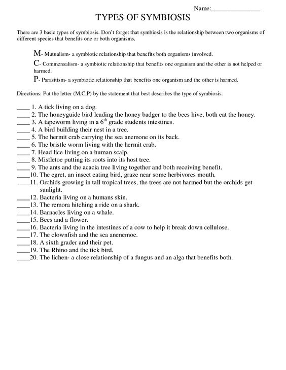 Symbiosis Worksheet