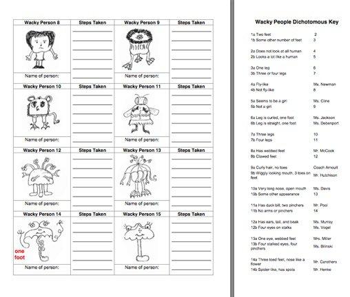 Taxonomy Classification And Dichotomous Keys Worksheet 30 Best