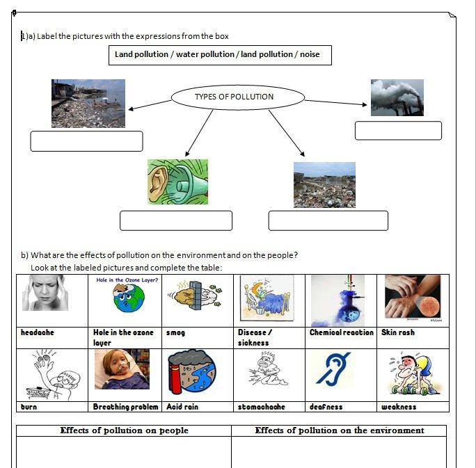 Water Pollution Worksheet Worksheet