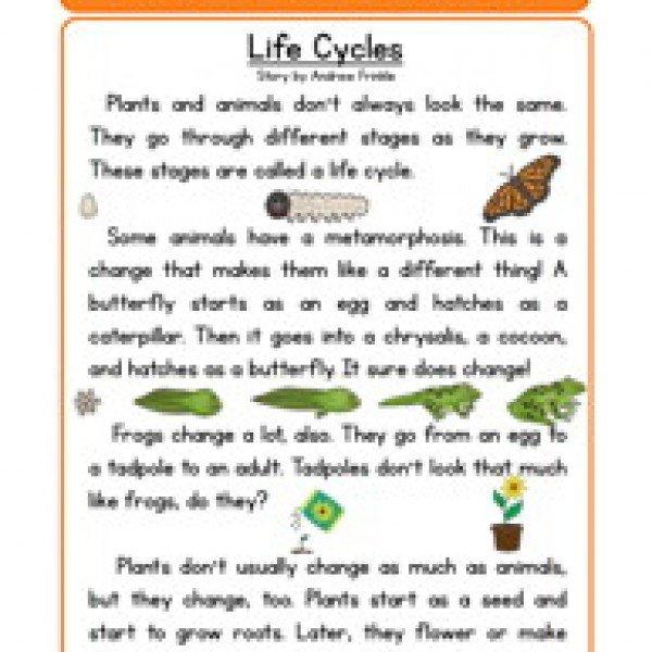 Worksheet Science Worksheets For All