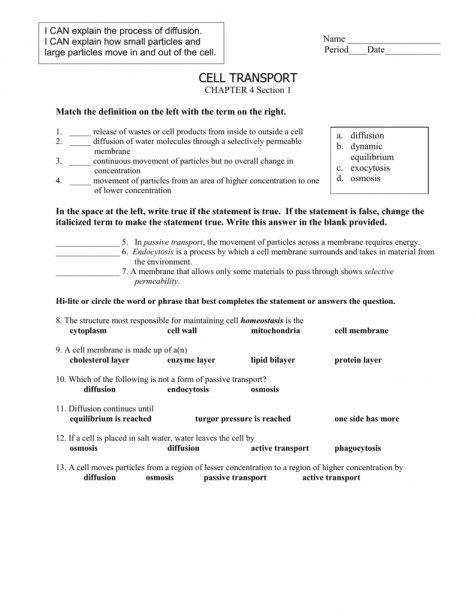 Worksheet Template   Osmosis Worksheet Biology Answers Biology