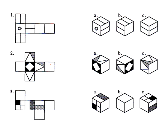 3 Best Images Of Nets Of Cubes Worksheet