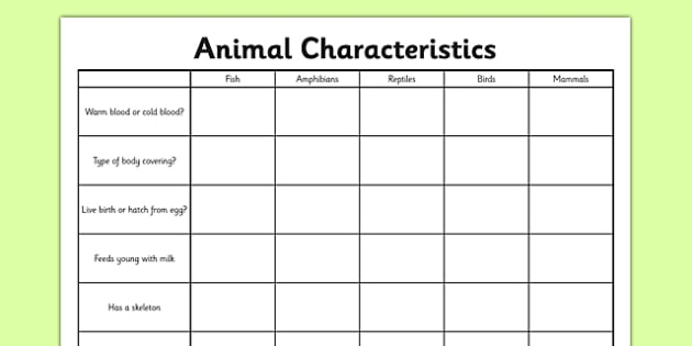 Animal Characteristics Worksheet   Activity Sheet