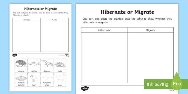 Animals That Hibernate Or Migrate Worksheet   Activity