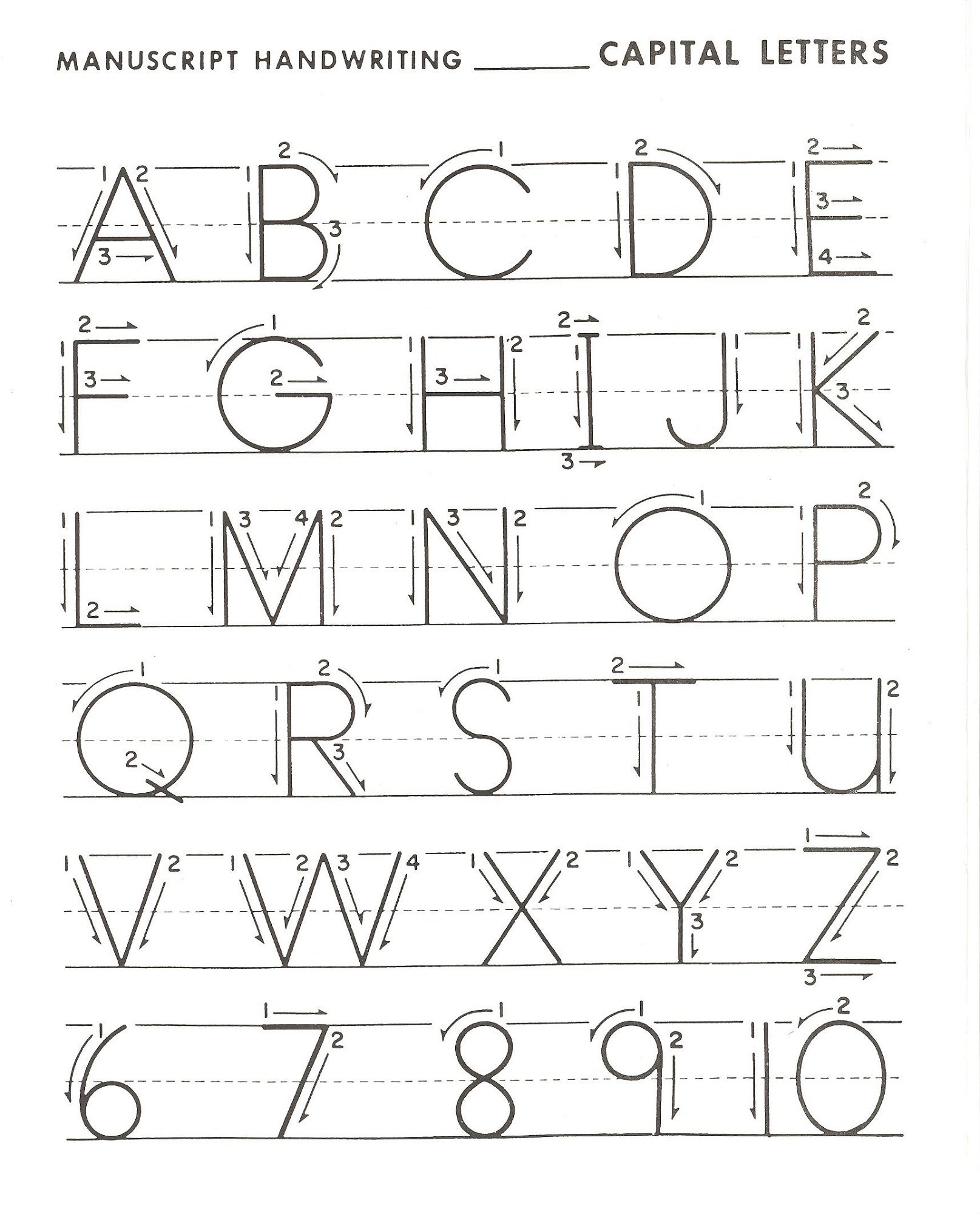 Capital Letters Worksheets The Best Worksheets Image Collection