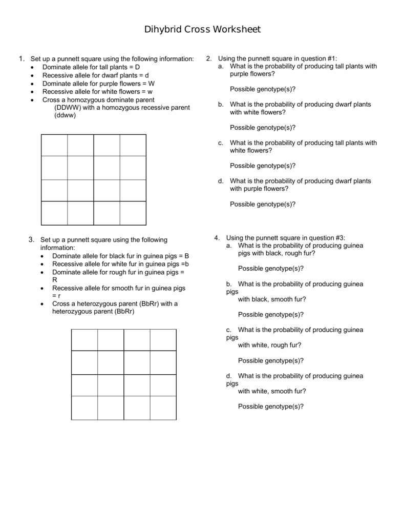 Collection Of Dihybrid Cross Worksheet Answer Key Pdf