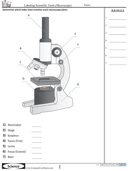 Common Core Worksheets  Scientific Tools Worksheets Excellent Site