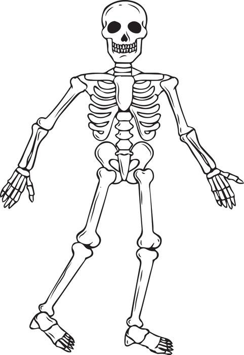 Free Printable Skeleton Halloween Coloring Page For Kids  2