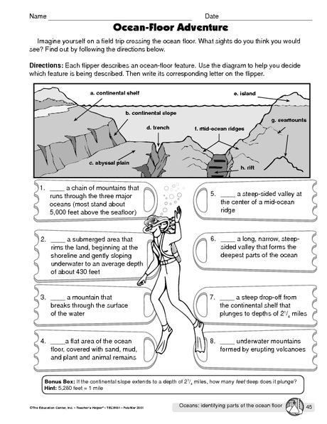 Grab This Wonderful Diagram Of The Ocean Floor For A Good Labeling