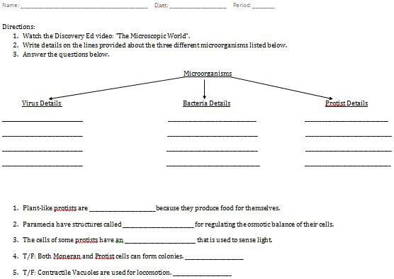Microorganisms Worksheets Grade 8