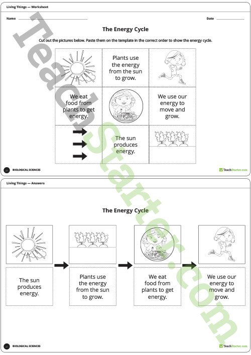 The Energy Cycle