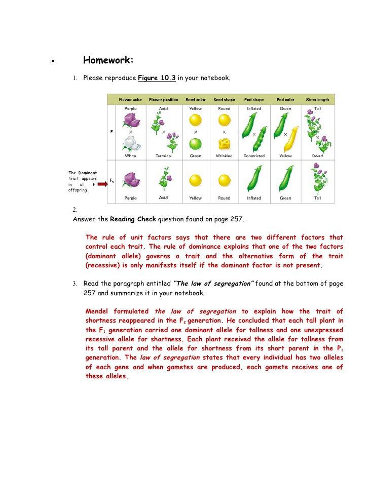 The Work Of Gregor Mendel Worksheet Answers The Best Worksheets