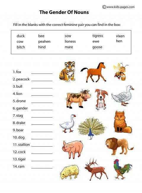 Worksheets On Gender Of Nouns For Grade 1