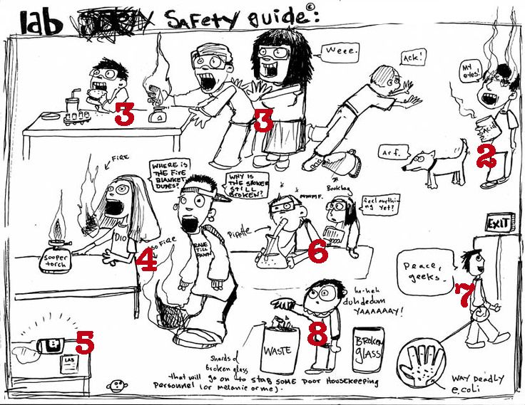 132 Best Safety In The Science Lab Images On Free Worksheets Samples