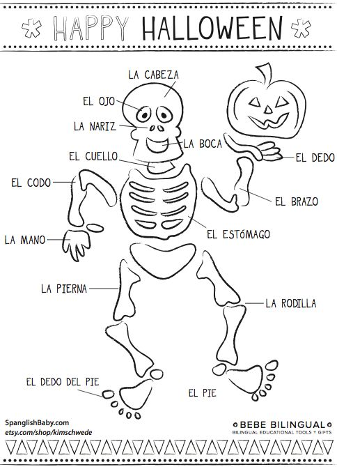 30 Best Spanish Body Parts Images On Free Worksheets Samples