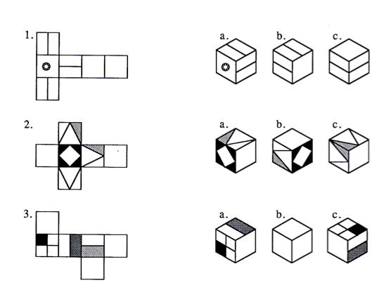3 Best Images Of Nets Of Cubes Worksheet – Free Worksheets Samples