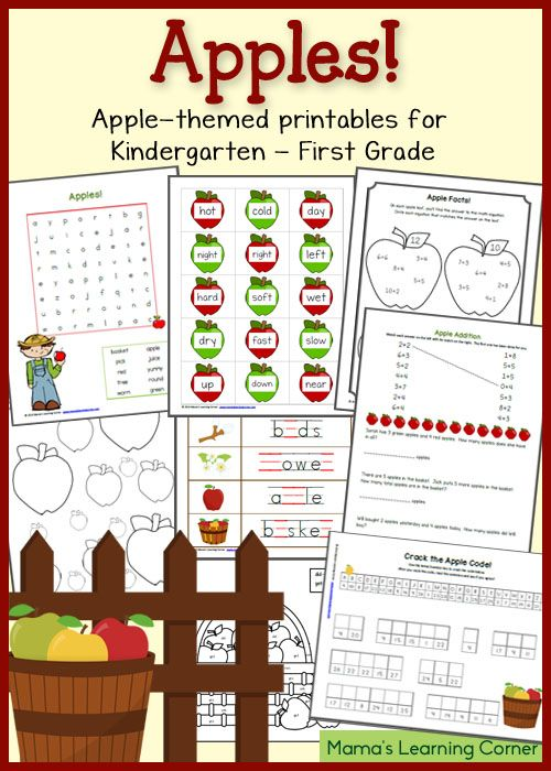 55 Best Homeschool Unit Study  Apples Images On Free Worksheets Samples