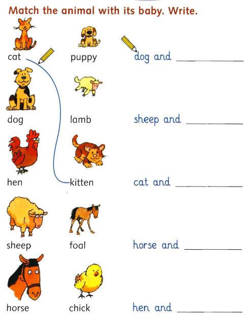 Baby Animals Names Worksheet Worksheets For All