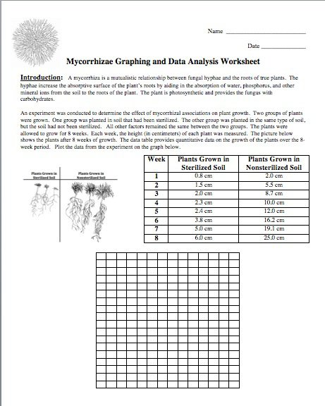 Best Solutions Of Graphing Data Worksheets High School On Format