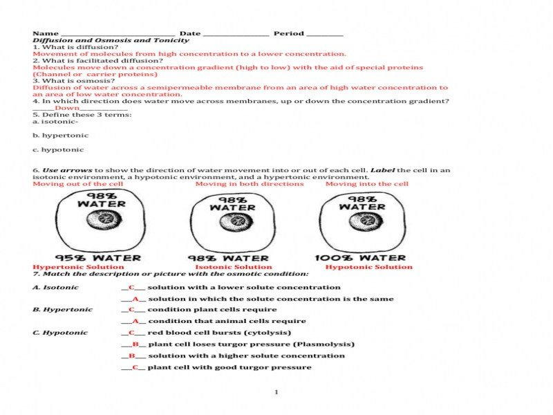 Cell Membrane And Tonicity Worksheet Answers The Best Worksheets ...