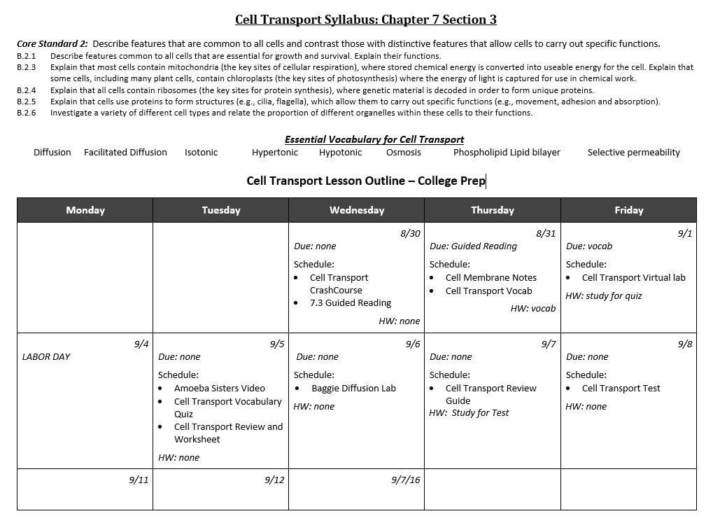 Cell Transport Worksheet Cell Transport Flashes Biology Download