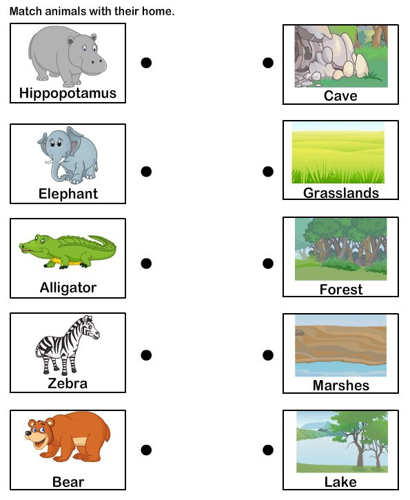 Endearing Animal Habitat Worksheets For First Grade For Animals