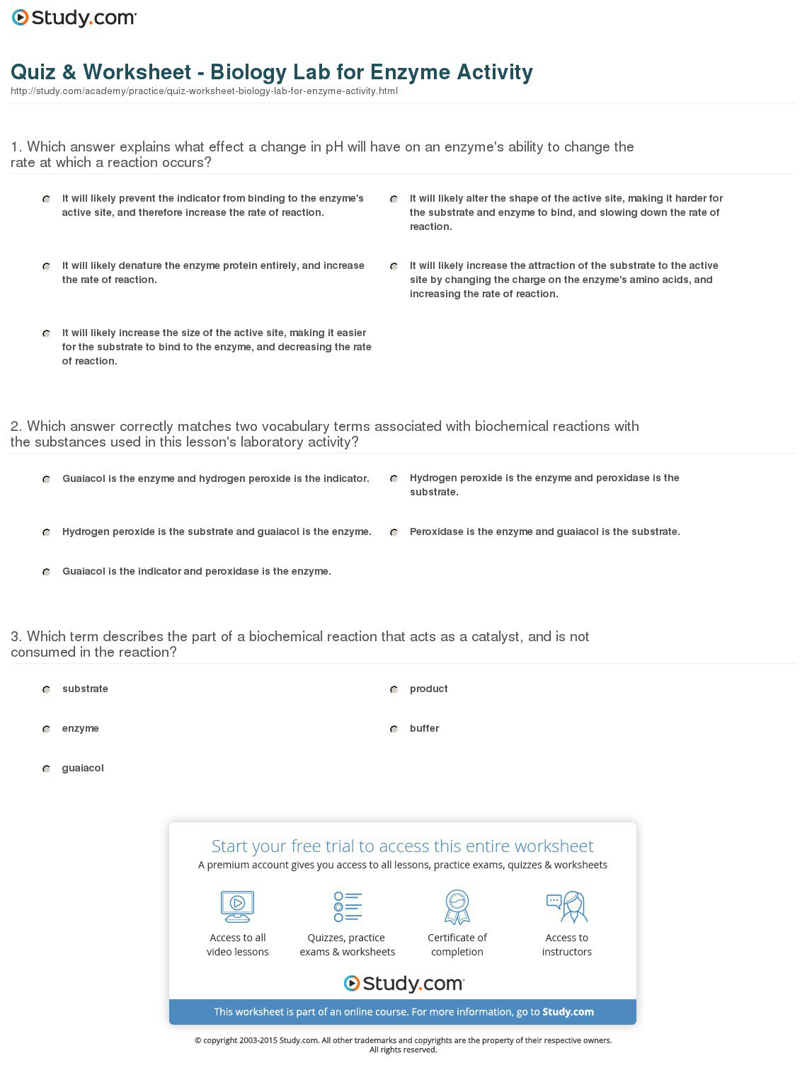 Enzymes Worksheets