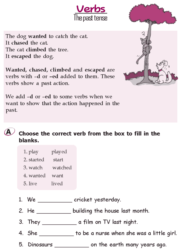 Grade 2 Grammar Lesson 14 Verbs – The Future Tense