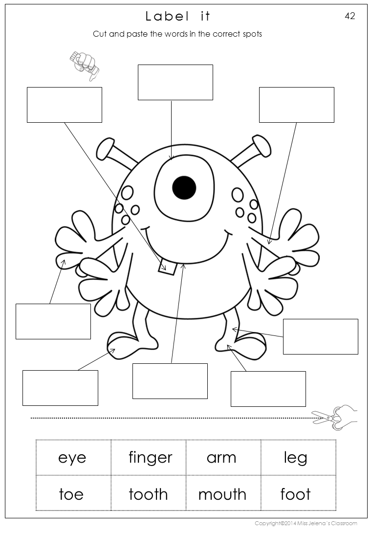 Human Body Parts Worksheets For Kindergarten