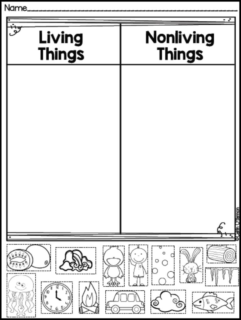 Kindergarten Worksheet On Living And Nonliving Things