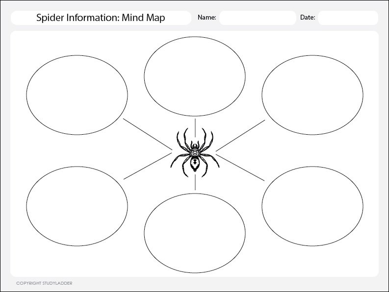 Mind Mapping Worksheet, Science Skills Online, Interactive