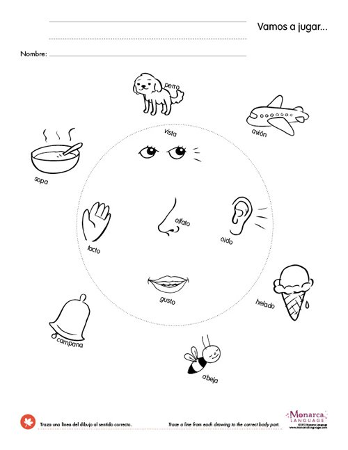 My 5 Senses 4s Printables