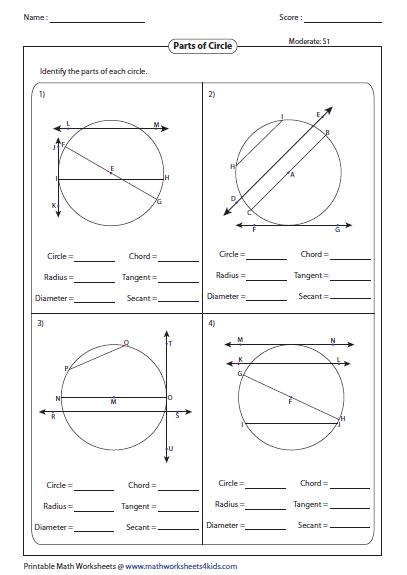 Parts Of A Circle Worksheet Identify Or Radius And Diameter